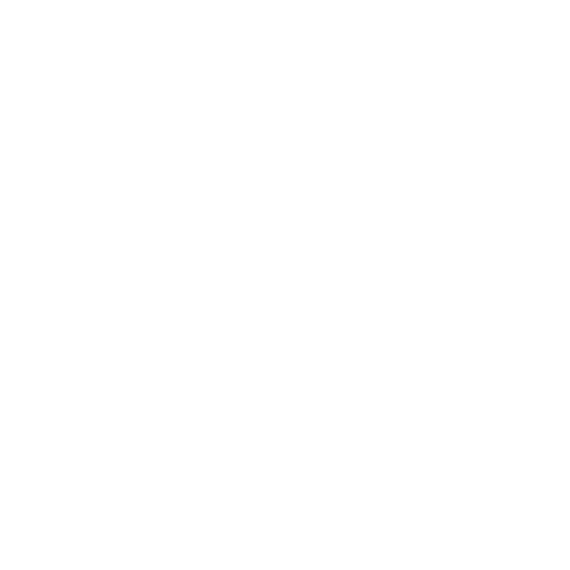 Icon - Physical Therapists